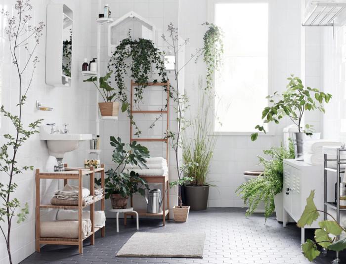 06. plants-interior