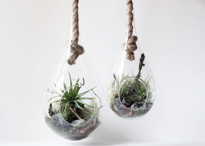 12. hanging-terrariums