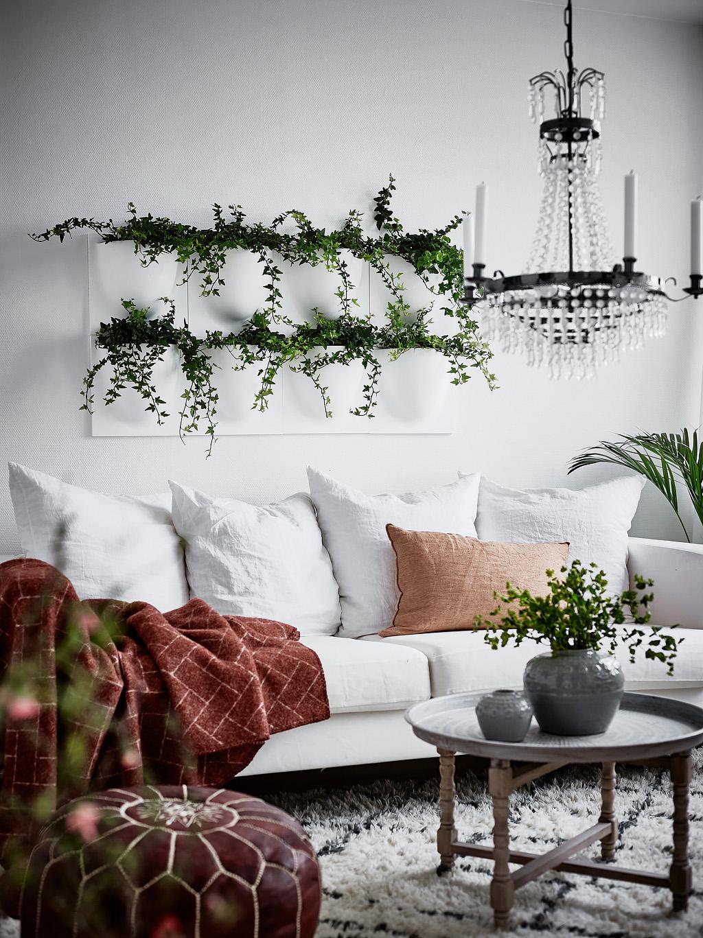 Växter som hänger på väggarna och kompletterar heminredningen