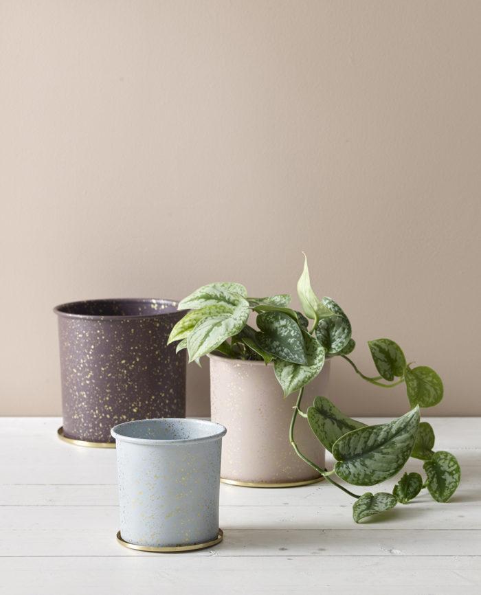 Krukor med gröna växter. Våren 2018 på Ellos Home.