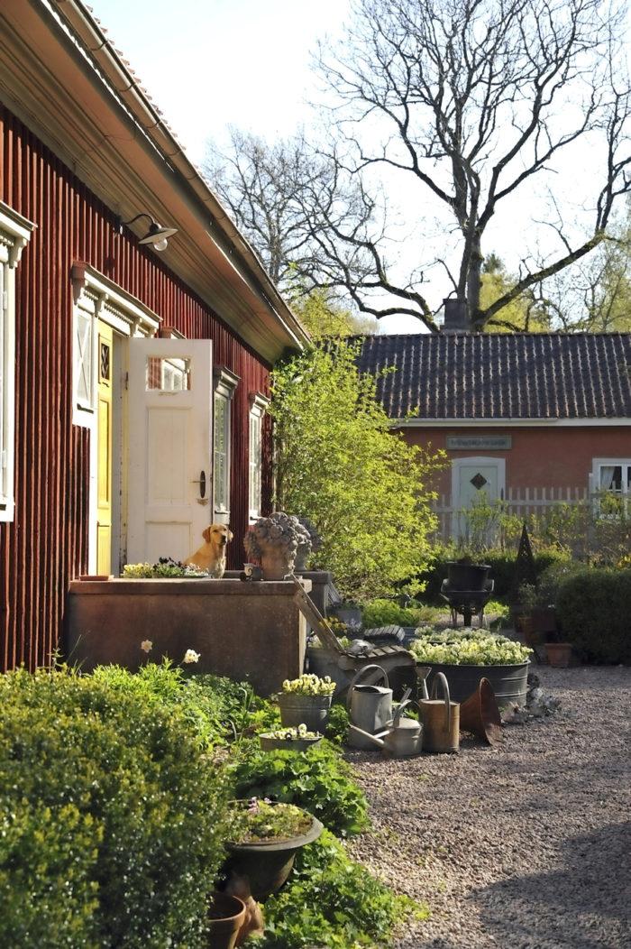 Hannu Sarenströms trädgård