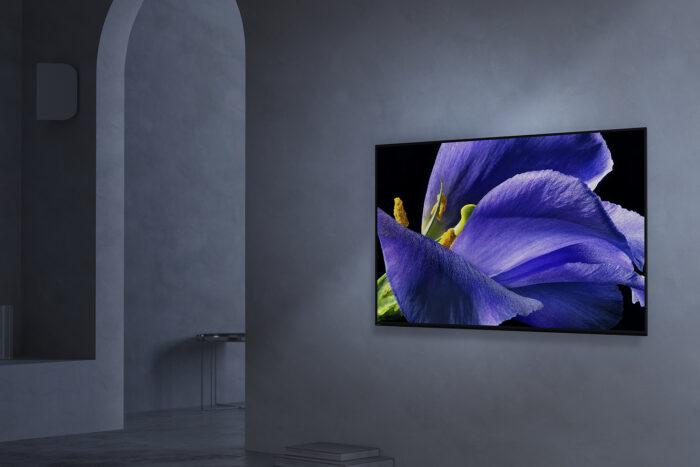 TV insignia de Sony: AG9