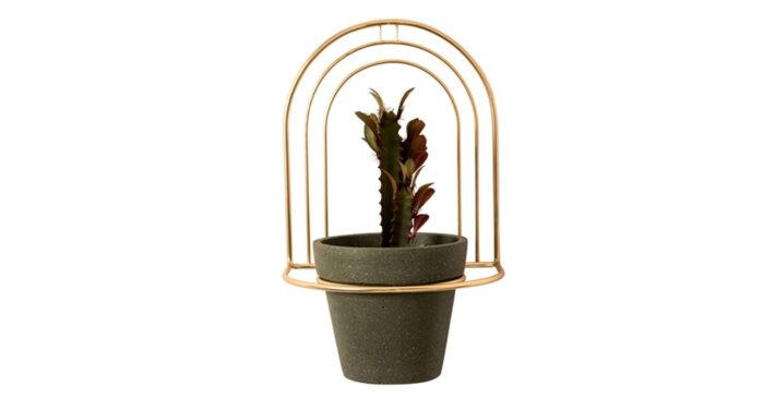 Decora las paredes con plantas en amperios