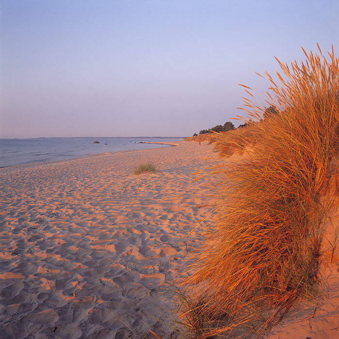 Böda Strand på Öland är en instagramvänlig strand i Sverige