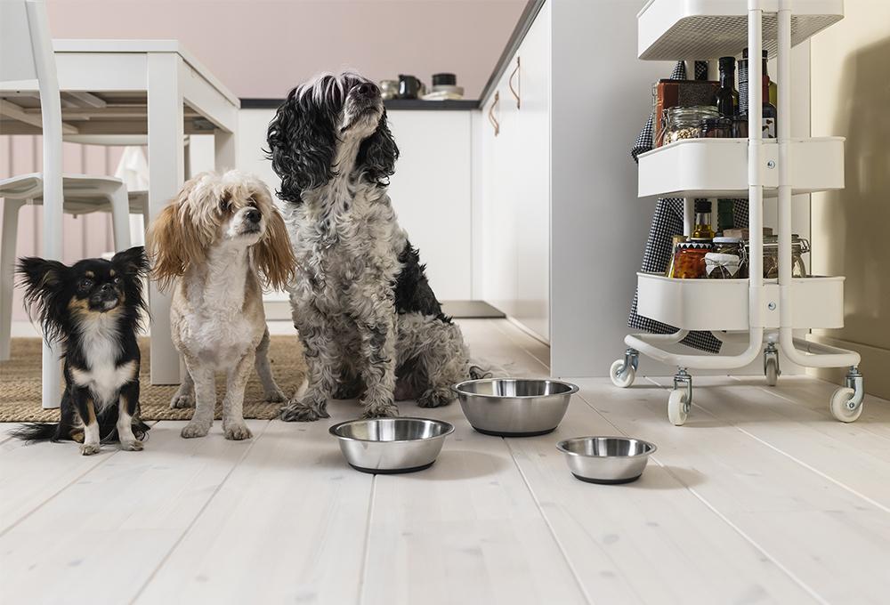 matskålar för husdjur från ikea
