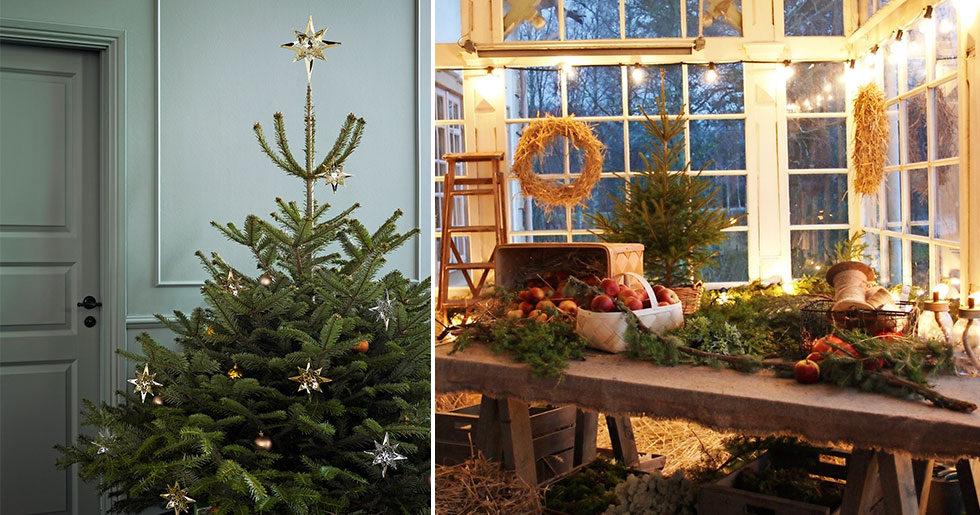 Så skapar du julstämning hemma – 3 experter ger sina bästa tips