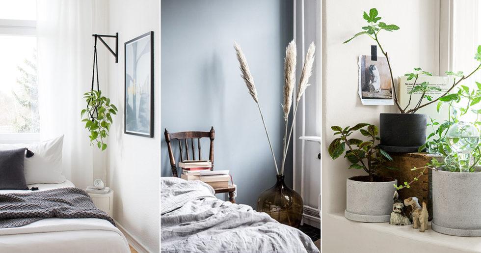 Inred med växter på liten yta – 8 compact living-tips  c47f5a95b03e7