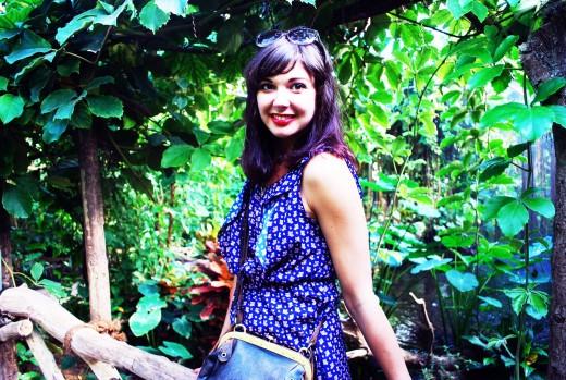 mio regnskog