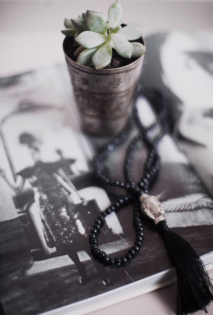 cactus ©Anna Malmberg