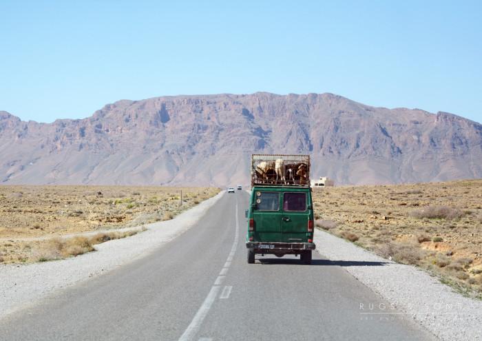 Transport.rgb