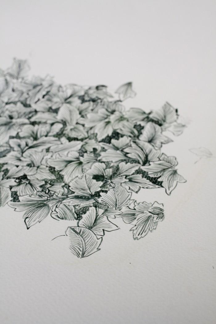 flower sketch liberty london susanna vento