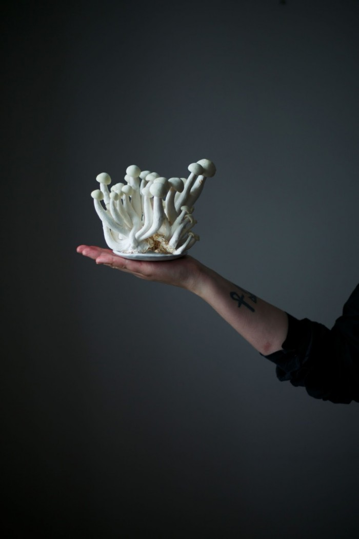 our food stories mushrooms