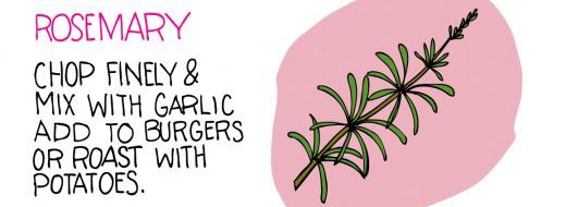Herbs, part of illustration by Heather Diane, http://illustratedbites.wordpress.com/2012/05/08/add-some-flavor/