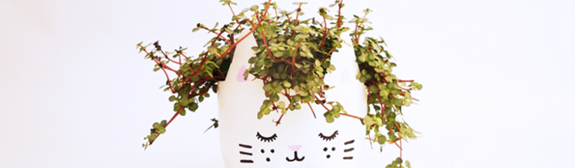 DIY cat planters from plastic bottles, by BruDiy
