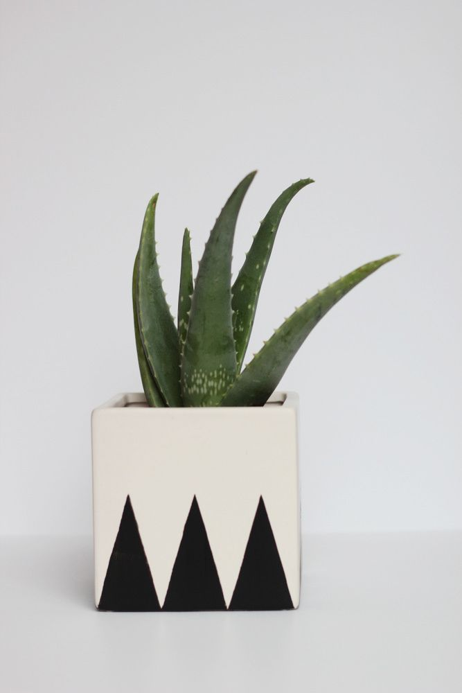 How to Make a Geometric Planter, from Hank and Hunt