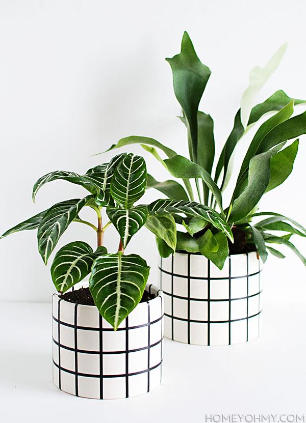 DIY Grid Planters, by Homey Oh My!