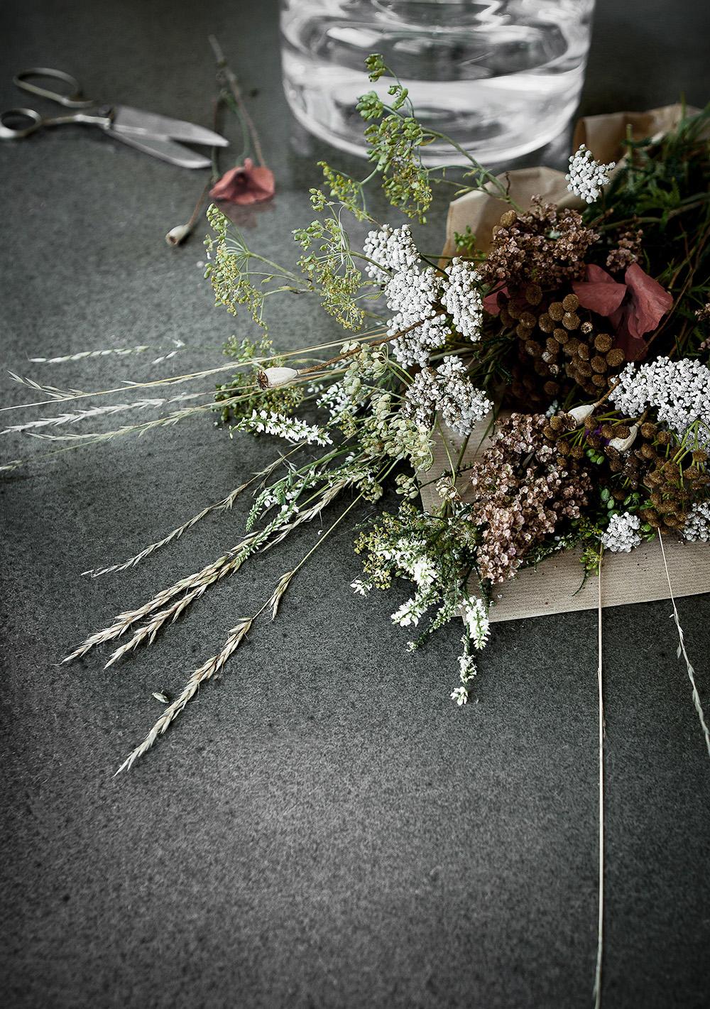 DW_Stegen vilda blommor - Vår och sommar 1000pxl (kopia)