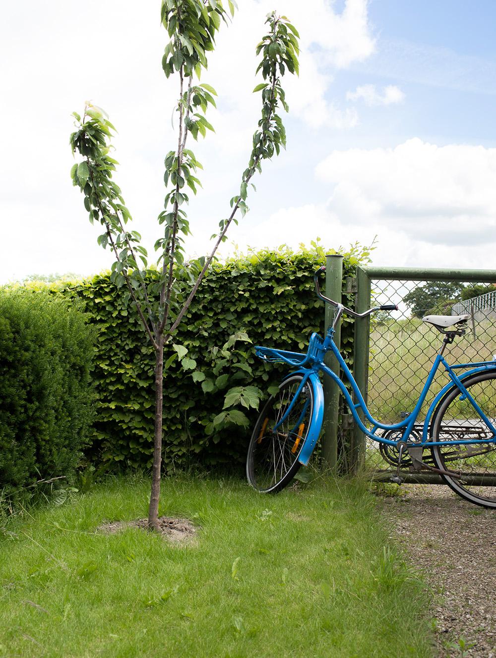 Hemma hos Isabella Witte_uterum_cykel