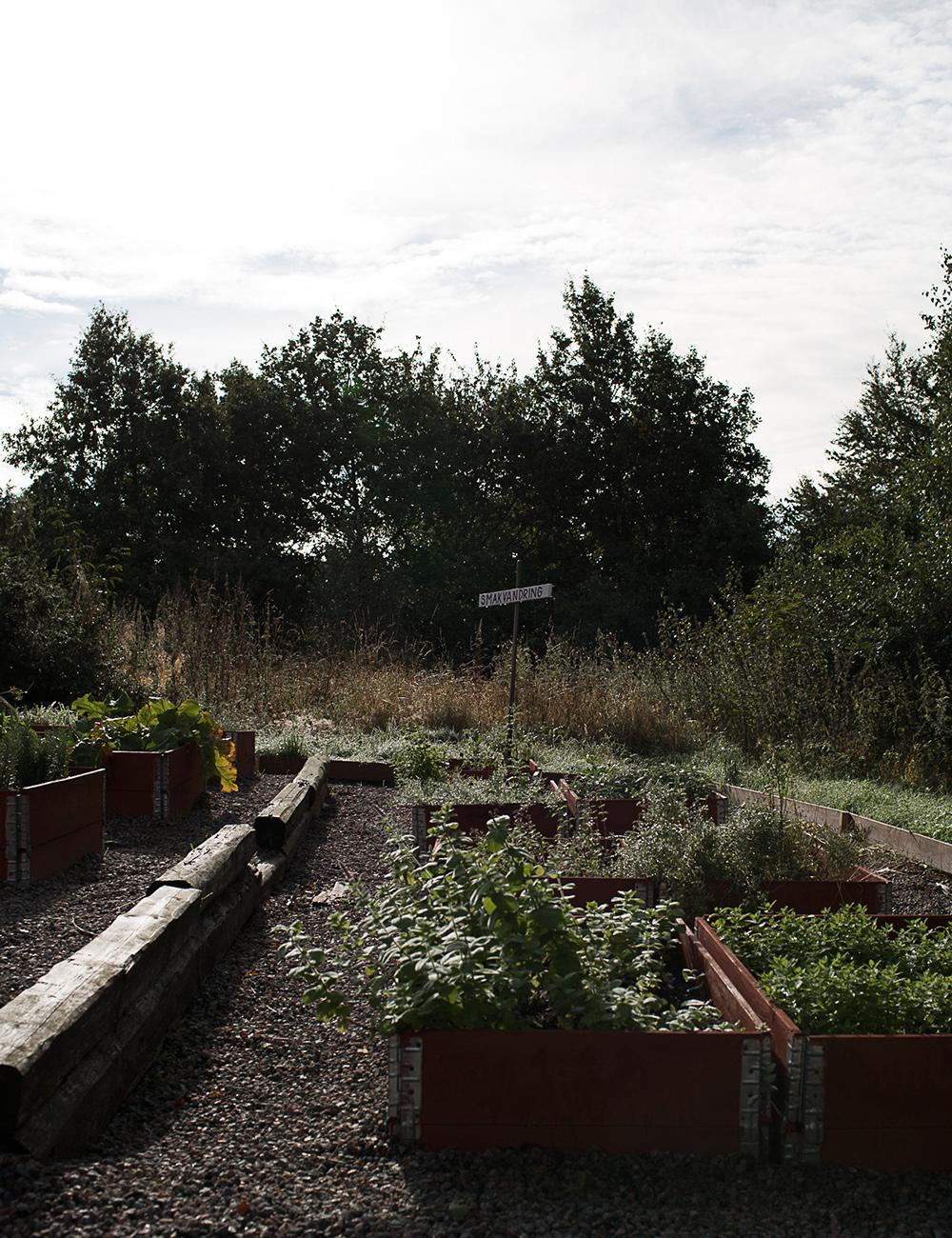 Blog meeting - The lodge greenery 2 (kopia)