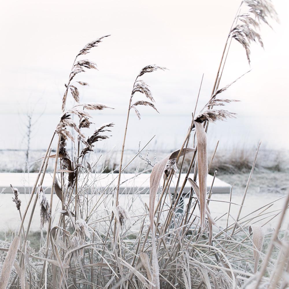 4 Vinterdag