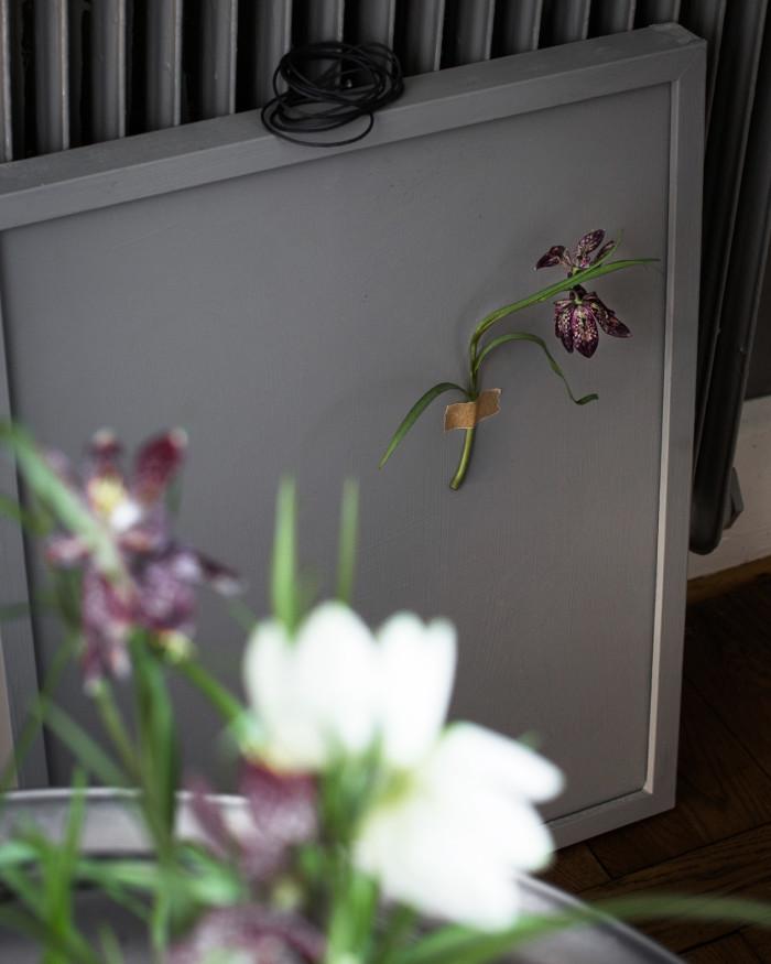 plantering i glasvas_kungslilja 2