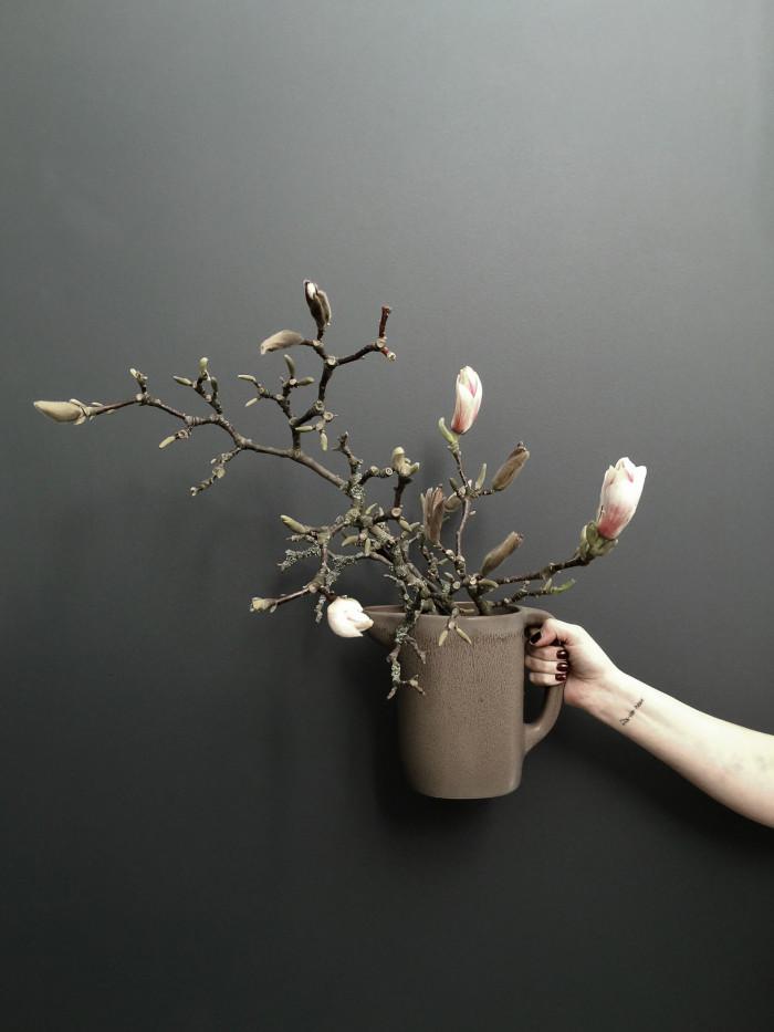 Magnolia i karaff