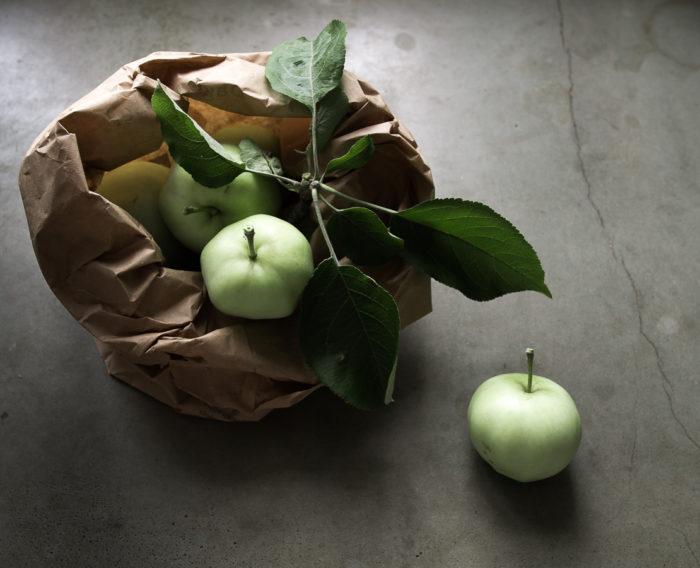 Äppelträd_plock