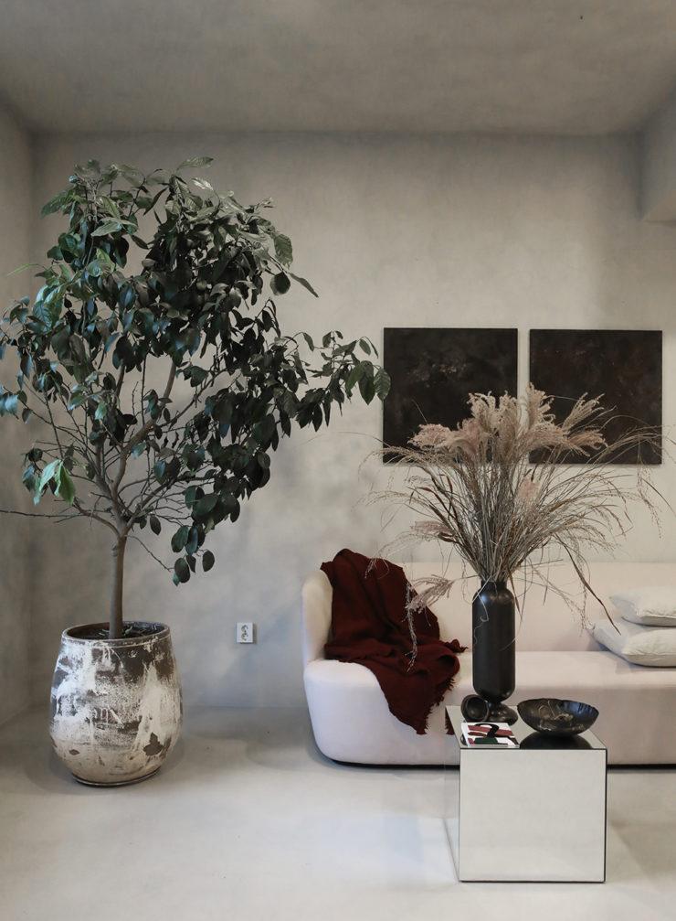 5 Prespective studio