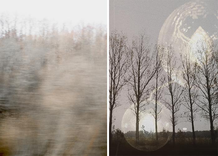 Daniella Witte_prints_november