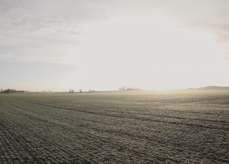 DW_landskap_gront_sol