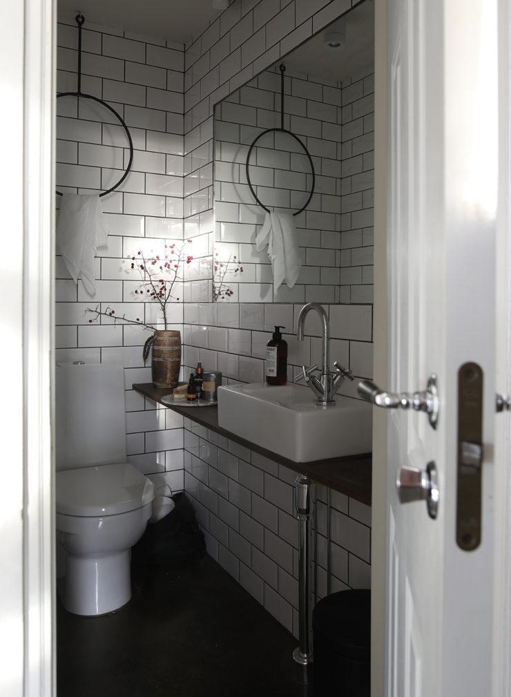 Daniella Witte_Guest toilett_1