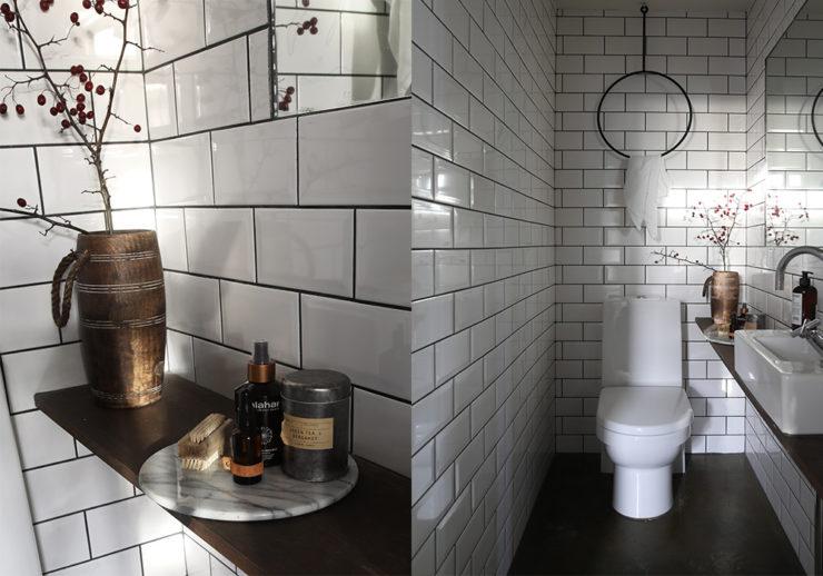 Daniella Witte_Guest toilett_5
