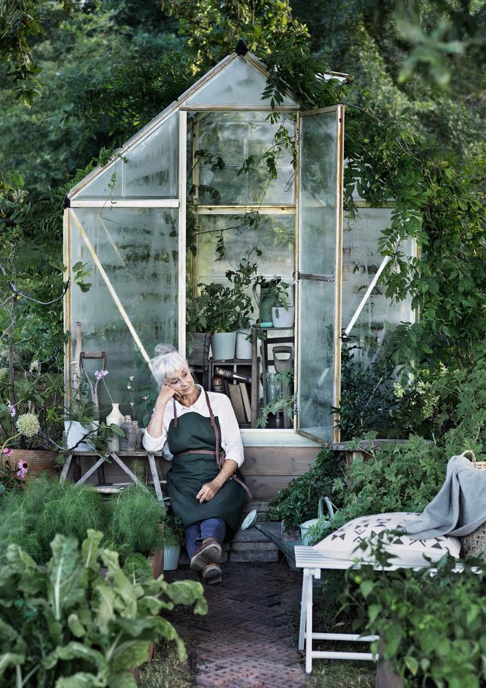 snyggt växthus
