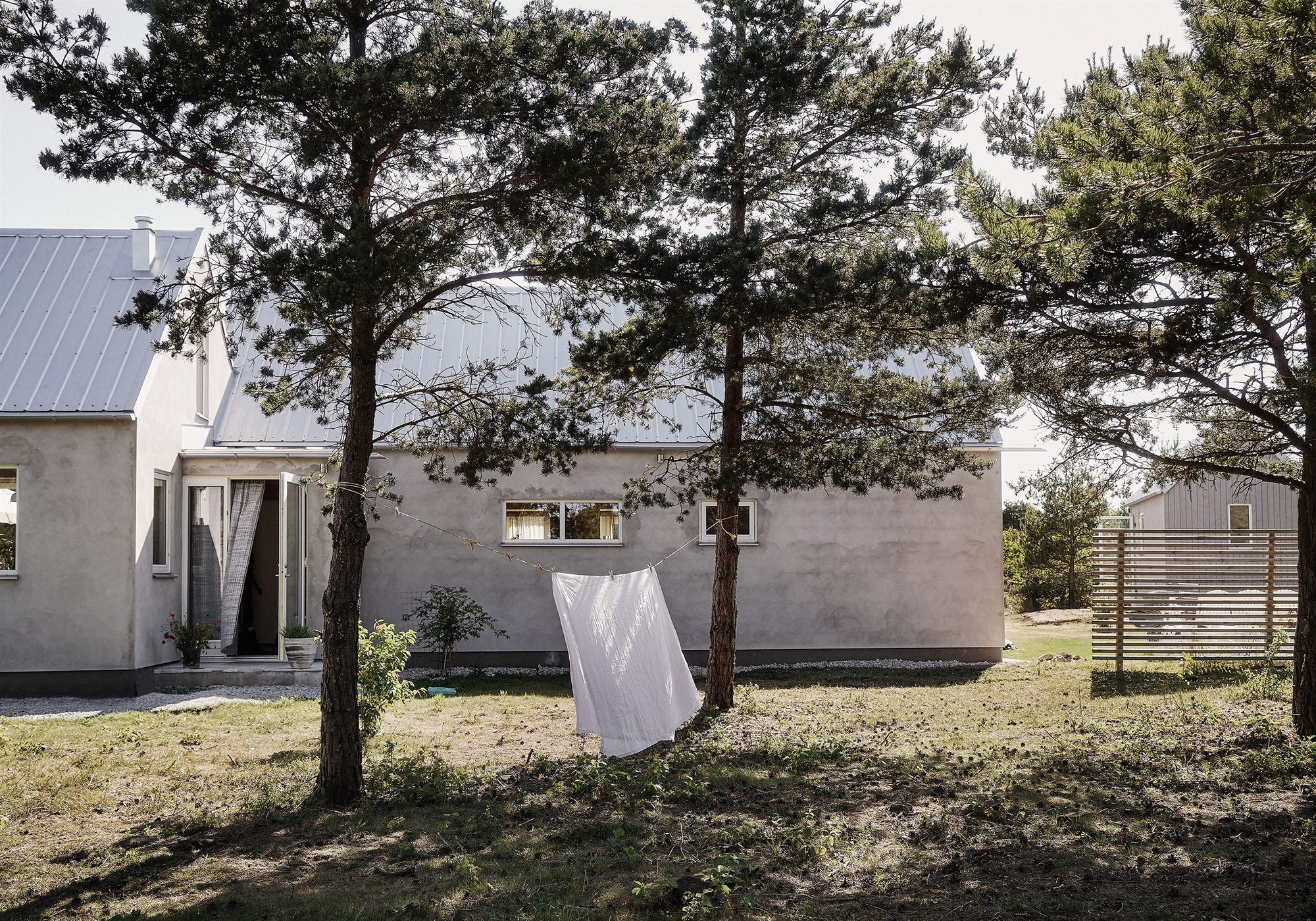Gotland_Fantastic_Frank_1