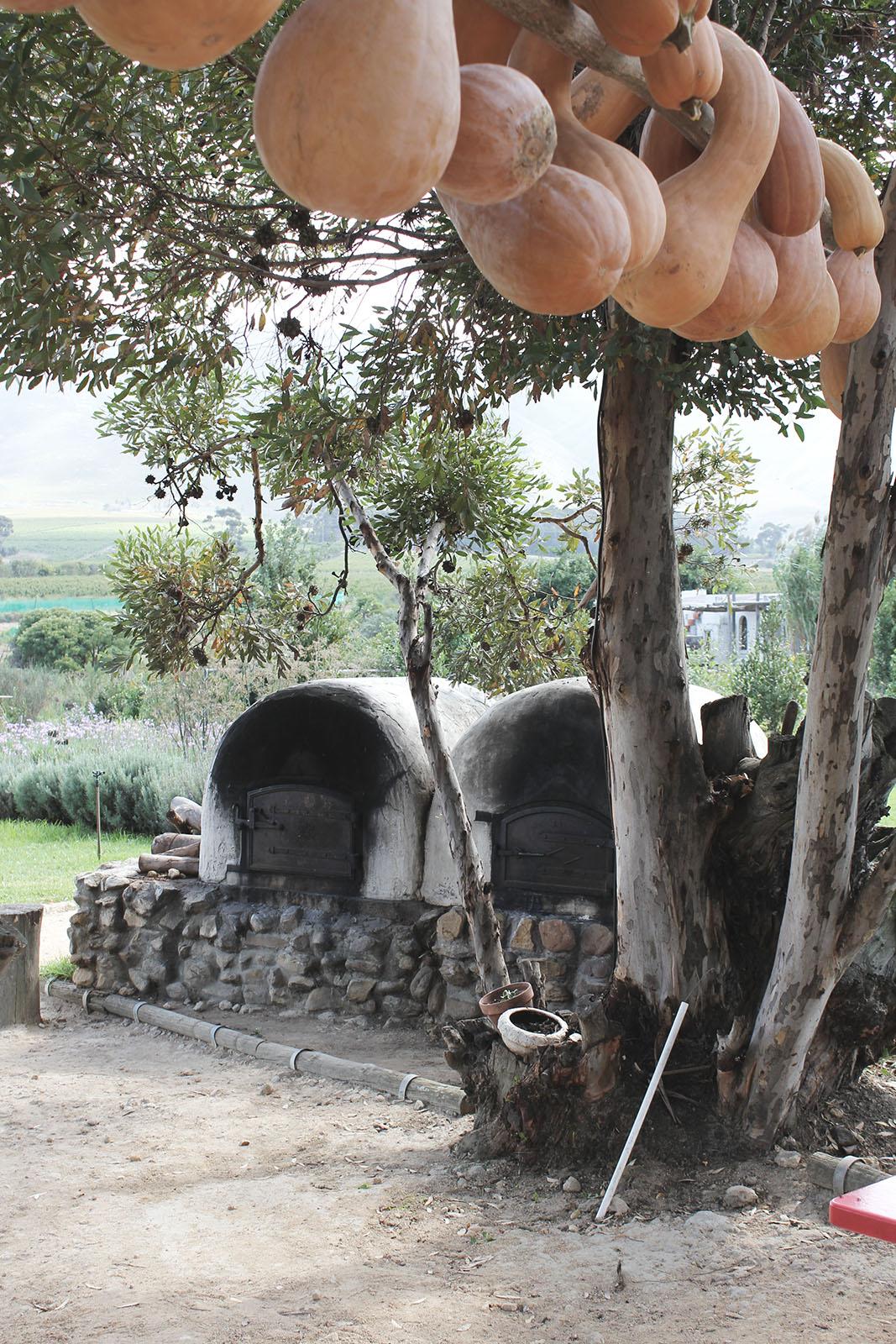 strenghielm_southafrica.3