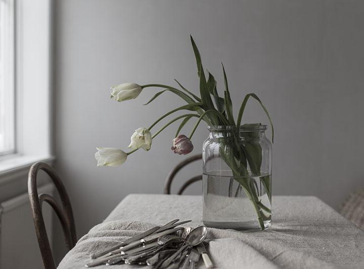 strenghielm_tuliplove.2