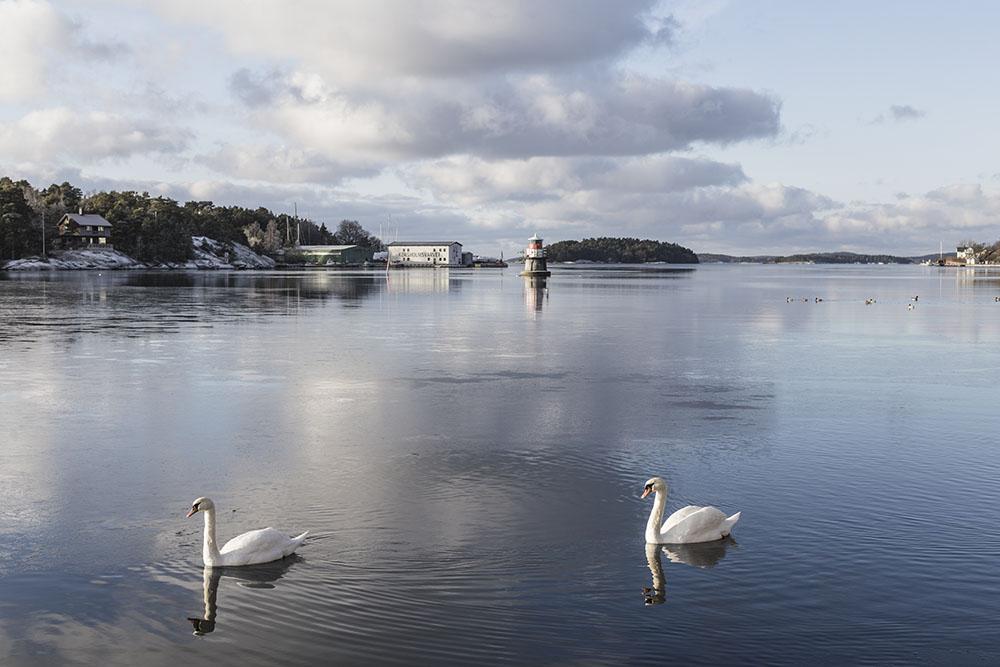 strenghielm_archipelago.3