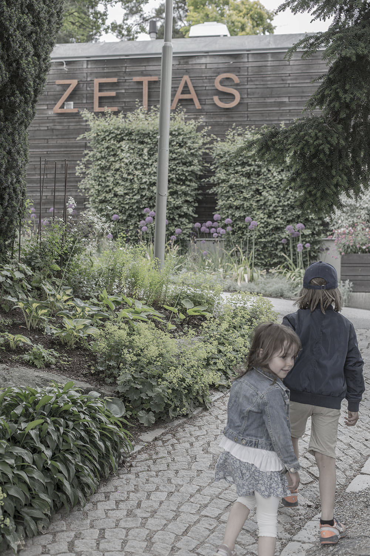 strenghielm_honda_zetas.2