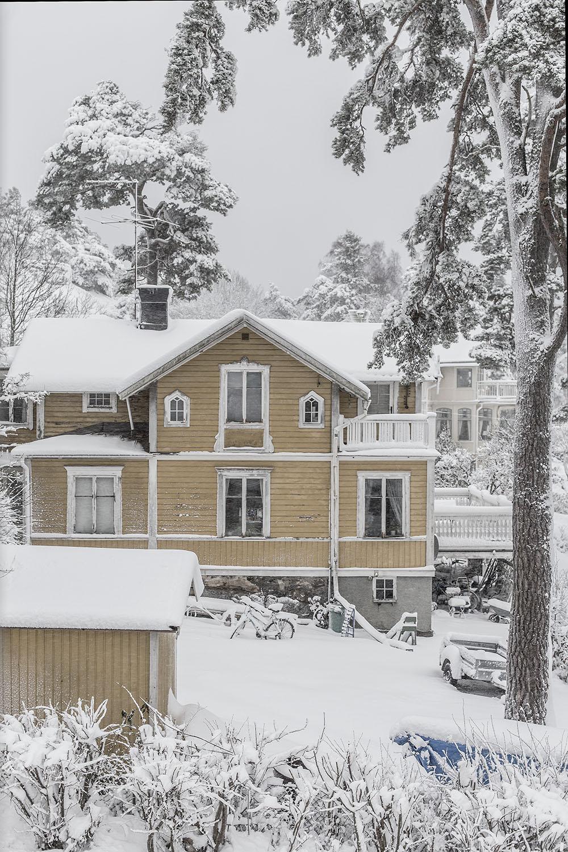 strenghielm_winter.6